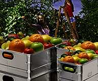 Transport von Obst und Gemüse